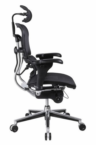 Ergonomic Office Chair With Lumbar Support Home