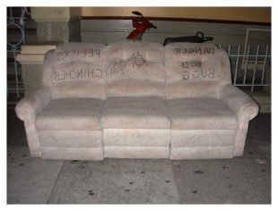 Adirondack Beach Chairs Home Furniture Design