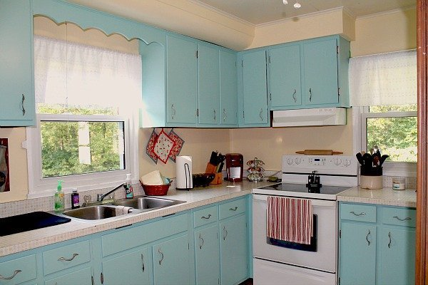 Painting cheap kitchen cabinets home furniture design for Budget kitchen cupboards