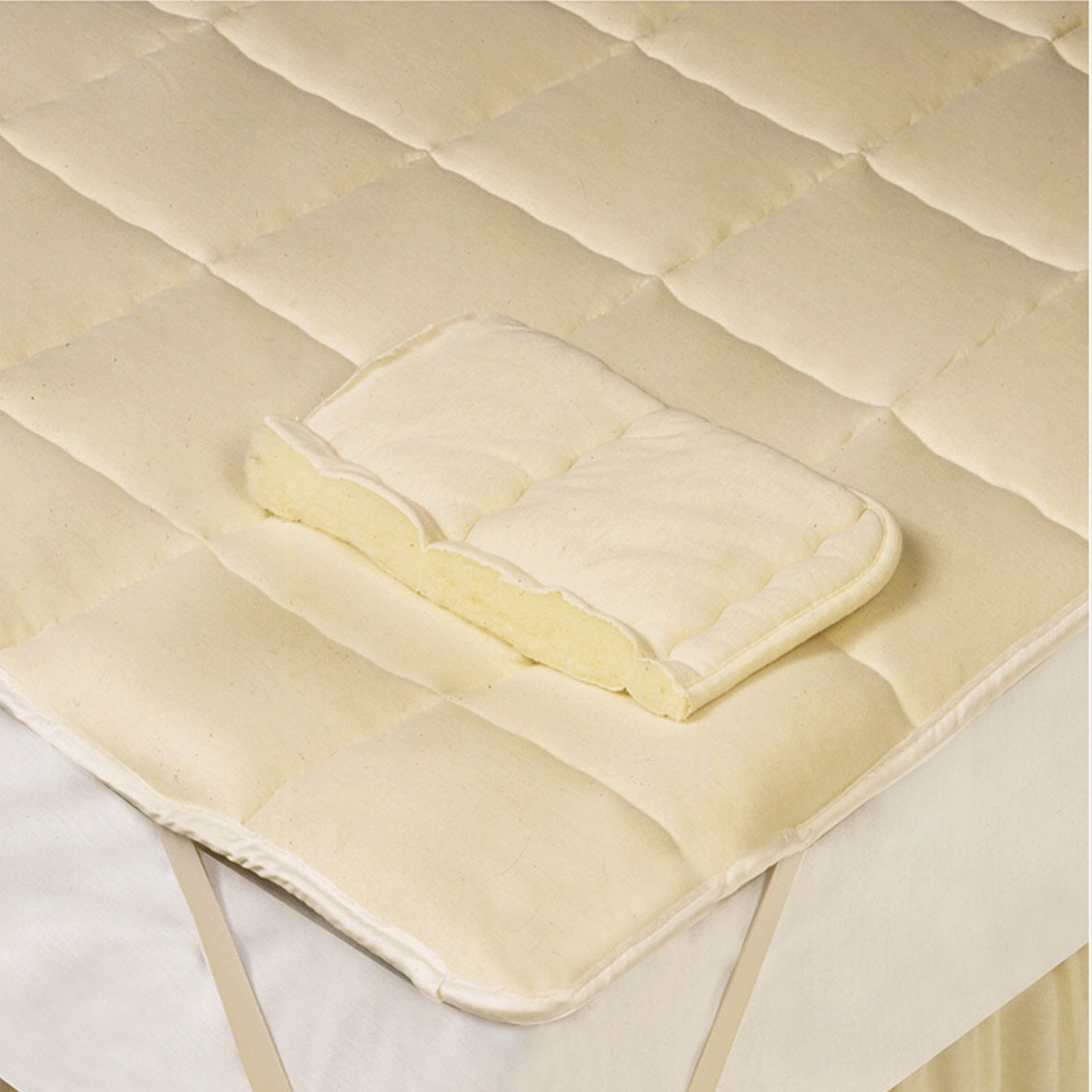 Best Rated Bed Bug Mattress Cover Home Furniture Design
