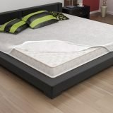 Bed Bug Mattress Cover Allergy Free Home Home Furniture Design