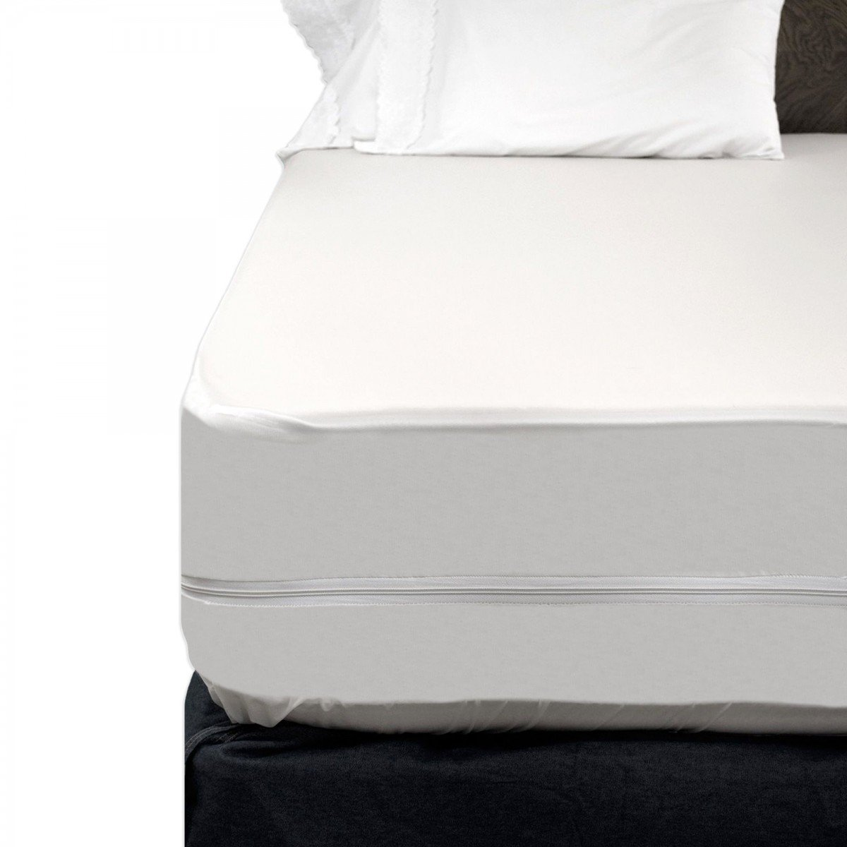 Zippered mattress cover bed bugs home furniture design for Sofa bed zippered mattress cover