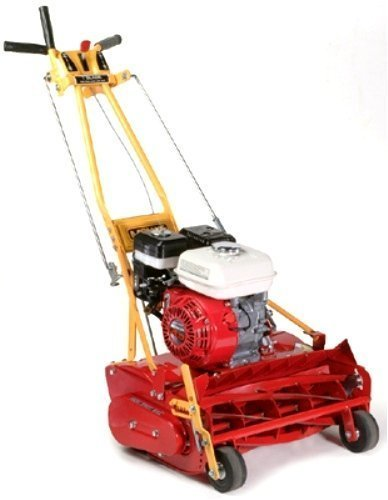 Gas Powered Reel Lawn Mower Home Furniture Design