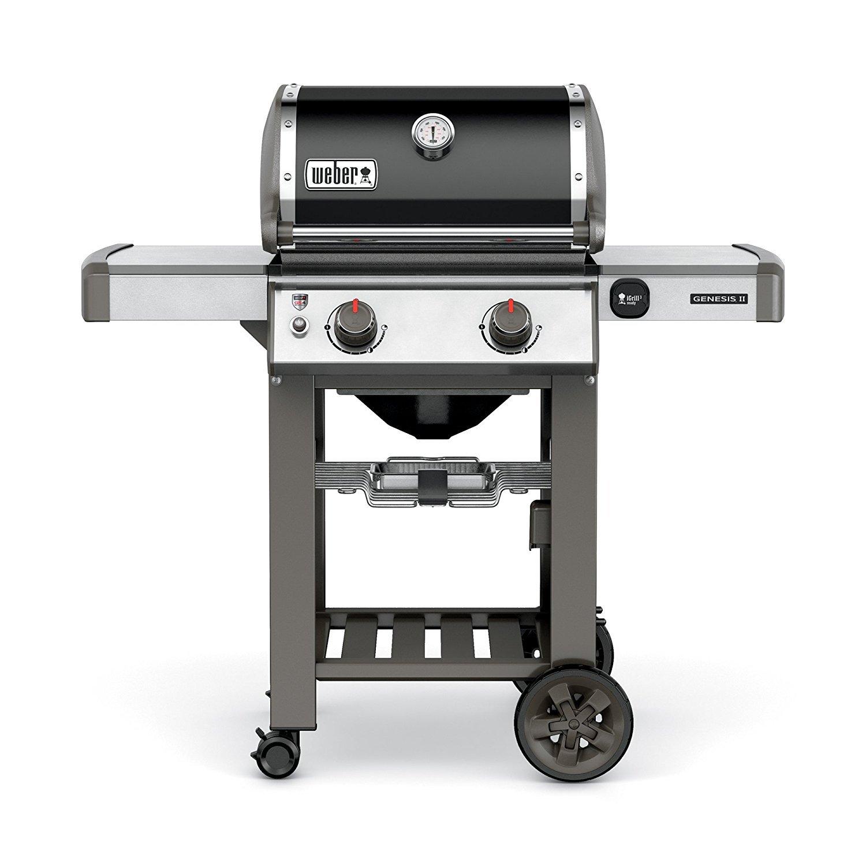 weber 2 burner gas grill home furniture design. Black Bedroom Furniture Sets. Home Design Ideas