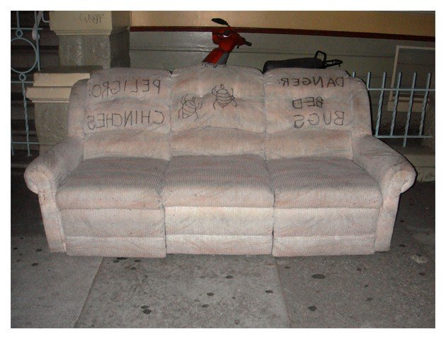 Bed Bug Couch Cover Home Furniture Design