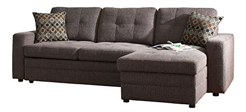 Sleeper Sofa With Chaise Home Furniture Design