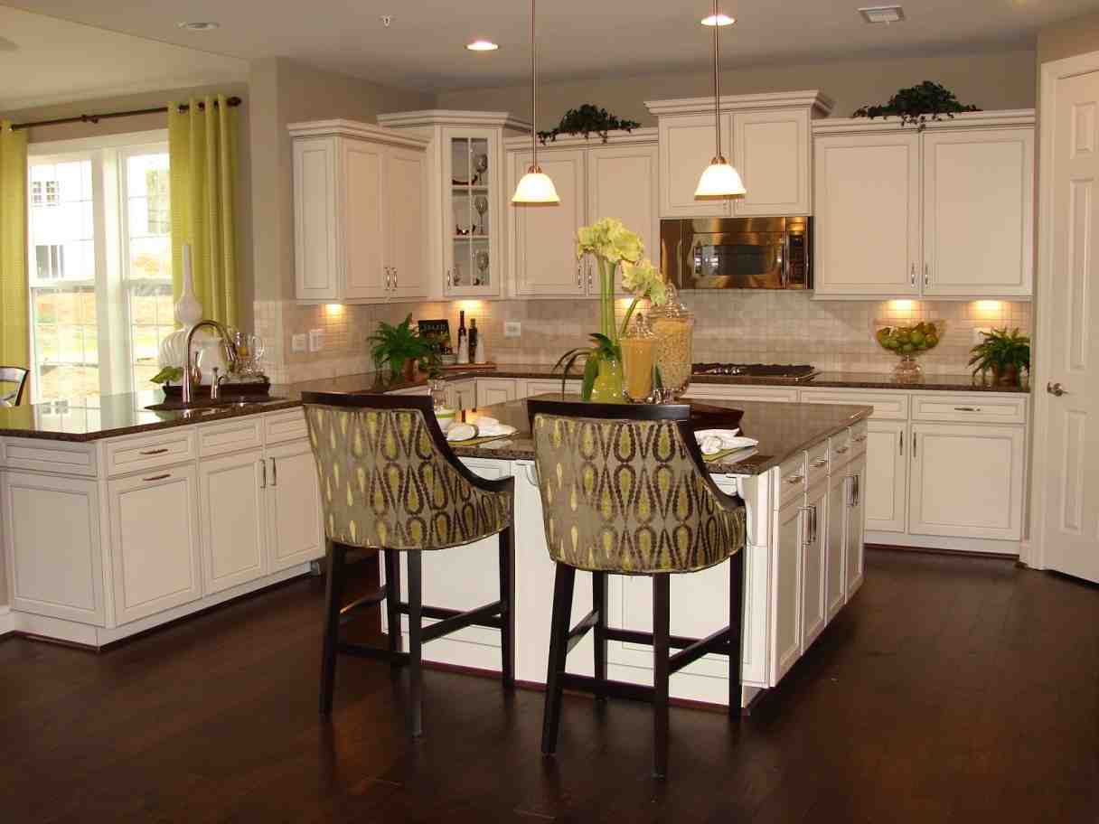 Kitchen Ideas with Maple Cabinets - Home Furniture Design