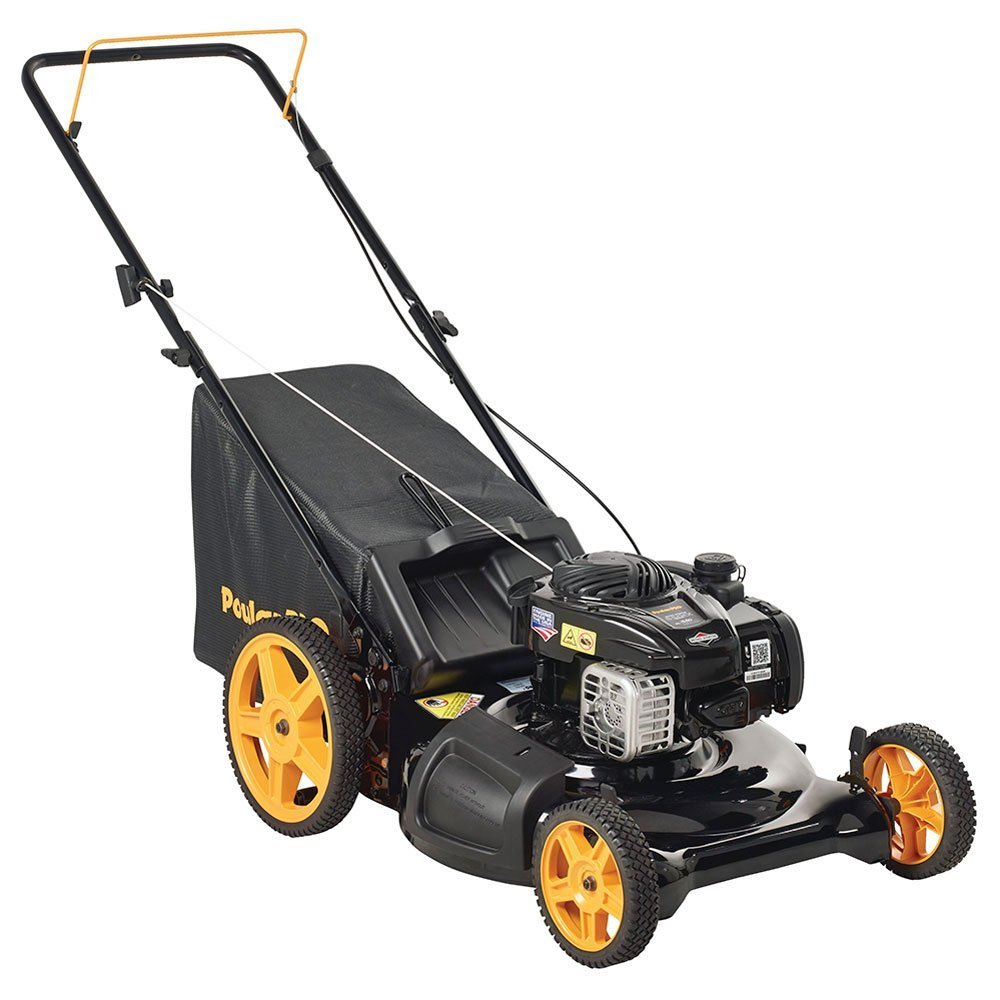 Gas Lawn Mower With Bag Home Furniture Design